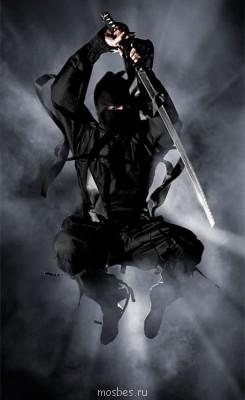 Мастер-класс по боевому искусству японских шпионов ниндзя - 0_8f65e_4298dff9_XL.jpg