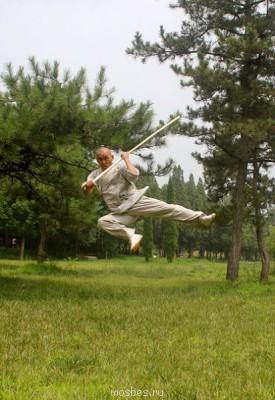 Дни Китая: мастер-класс монаха Ши Янбина - IMG_7320 (21).jpg